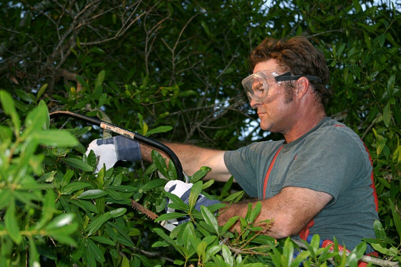 Hawthorn Woods, IL Tree Service